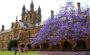 M S University by 12 Best Universities In Australia For Ms Indian Students Should Know
