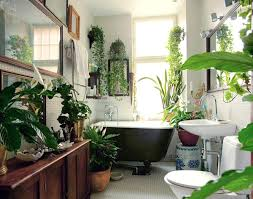 Best Bathroom The Best Bathroom Plants For Your Interior Bathroom Plants