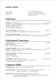 Sample Resume For College Student With No Experience Sample Cv Summer Job