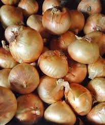 onion seeds for sale organic vegetable garden seeds