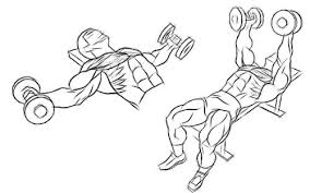 Flat Bench Press Dumbbell Scoliosis Workouts