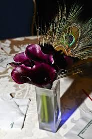 Peacock Feather Centerpieces by 47 Best Flowers Images On Pinterest Peacock Wedding Centerpieces