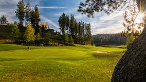 golf in spokane courses lessons u0026 walk on tee times
