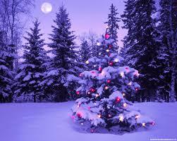christmas tree live wallpaper christmas lights decoration