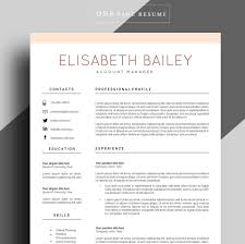 resume templates professional resume template cv template professional resume template zoom
