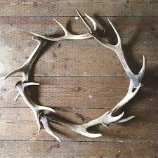 21 best antlers images on deer antlers decor painted