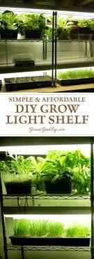 growing herbs indoors under lights 2096 best gardening images on pinterest backyard ideas garden