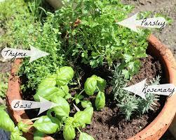 Vegetable Pot Garden by An Herb Garden Home Everyday