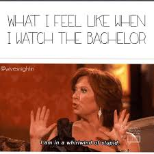The Bachelor Memes - what i feel like when i watch the bachelor funny the bachelor tv