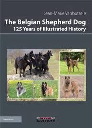 belgian sheepdog australia books