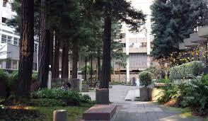 Urban Gardens San Francisco - discovering san francisco secret gardens and public rooftop open