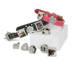 pet remembrance jewelry leather photo charm bracelet pet memorial jewelry molly bracelet