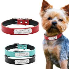 personalized collars custom cat pet name id collar
