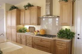 kitchen cabinet custom kitchen cabinets design installing