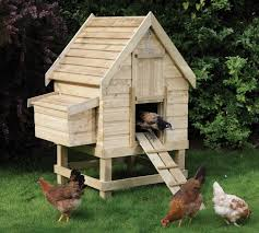Backyard Poultry In India Different Types Of Backyard Chicken Coops The Poultry Guide