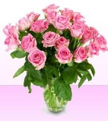 Different Color Roses Meaning And Significance Of Rose Colors What Different Color
