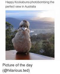 Funny Australia Day Memes - 25 best memes about kookaburra kookaburra memes