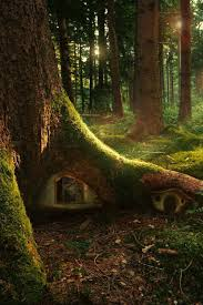 Treehouse Europe - can you imagine a little kid coming across this fun klf tree
