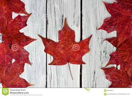 Canadian Flag Patch Canadian Red Maple Leaf Flag White Wood Background Stock Photos