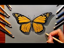 drawing a butterfly with colored pencils speed draw jasmina