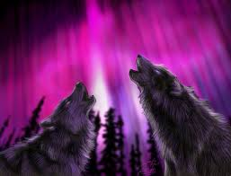 39 best wolves images on pinterest wolf spirit wolves art and