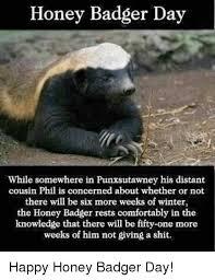 Badger Memes - honey badger day while somewhere in punxsutawney his distant cousin