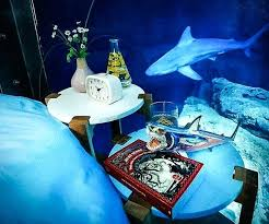 Shark Bedroom Curtains Shark Bedroom Splendid Shark Bedroom Curtains Designs With Shark