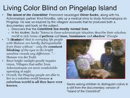 Living With Color Blindness The Colorless Paradise An Examination Of Color Blindness On The