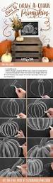 Kitchen Chalkboard Ideas 17 Best Images About Diy Tips Tricks And Tutorials On Pinterest