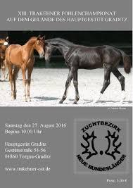 Pferdezentrum Bad Saarow Calaméo Trakehner Fohlenchampionat Graditz Katalog 2016