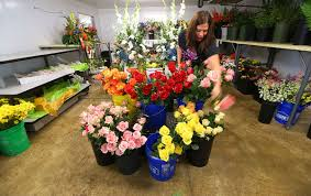 local florists hurricane irma leads to historic flower shortage for local
