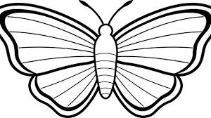 coloring pictures of small butterflies coloring pages of butterflies coloring book ribsvigyapan com