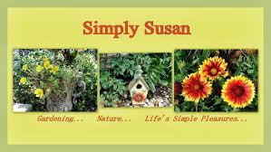 Zone Gardening - collages7 jpg