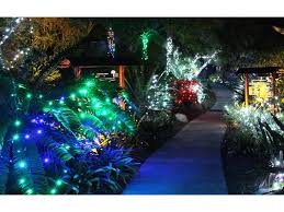 christmas lights san diego san diego botanic garden s garden of lights