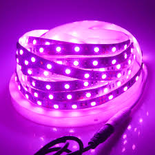 Purple Led Light Strips by Aliexpress Com Buy Foxanon 5050 Pink Ice Blue Color Led Strip 5m