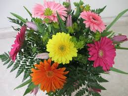 gerbera daisies colorful gerbera daisies and tulips forget me not
