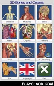 Primal Anatomy App Best 25 Anatomy And Physiology Quiz Ideas Only On Pinterest
