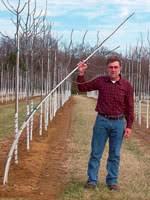 tree stakes smart stake