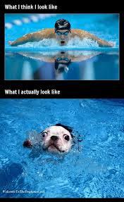 Expectation Vs Reality Meme - 20 funny expectation versus reality memes