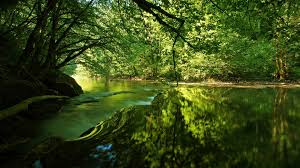 lakes lovely beautiful rivers peaceful splendor river green flow