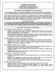 salesman resume exles software sales executive resume exle executive resume resume