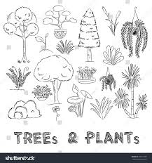drawing trees plants collection on grid stock illustration