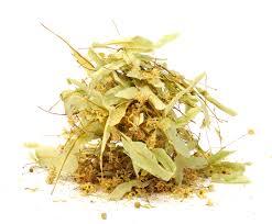 linden flower organic linden blossom urbane tea company