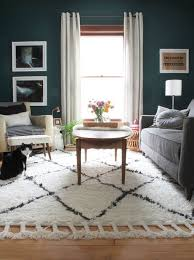 Living Room With Area Rug by 25 Best Shag Rugs Ideas On Pinterest Shag Rug Bedroom Rugs And