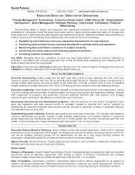 example executive resume doc 691833 sample non profit resume 17 best images about non sample executive director resume for nonprofit curriculum vitae 0 sample non profit resume