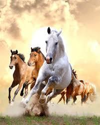 online buy wholesale mosaic horse art from china mosaic horse art