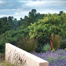 Cottages Gardens - bernard trainor artfully transforms a rugged carmel property into