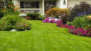 Ready For Spring by Get Your Yard Ready For Spring With This Easy Guide Homeyou
