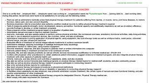 physiotherapist work experience certificate