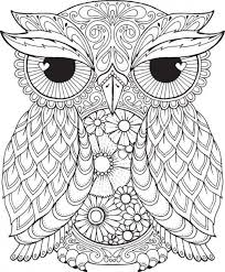 free difficult coloring picture owl print adults
